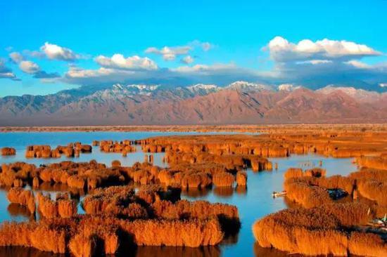 大沙湖旅游区地处宁夏自治区石嘴山市,距银川56公里,是宁夏的龙头景