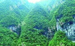 驴友徒步梵净山核心区原始森林 掉队失联搜救未果