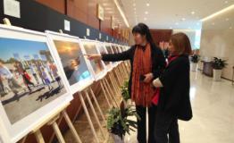 2017香河荷花节硕果累累 引领全域旅游示范县创建