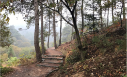 新县步道,发展之路