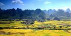 推荐 | 贵州最美的春天,就藏在这些世外桃源里!